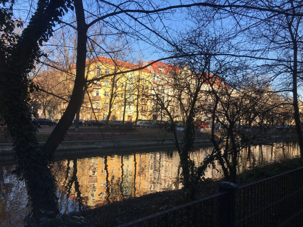 a canal in Neukölln with a big tree with long branches and buildings on the other side of the canal